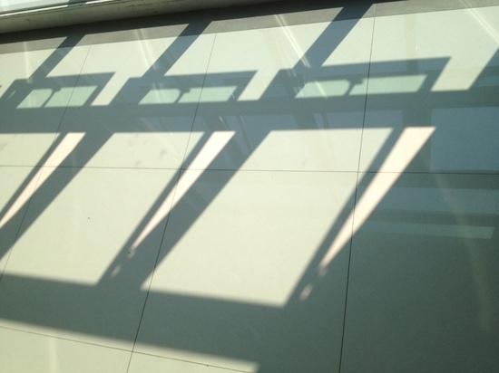 写真 のコピー 3.JPG